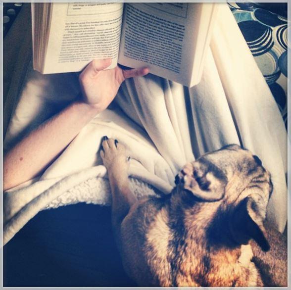 Bookworm buddies